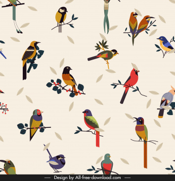 birds species background colorful classical design