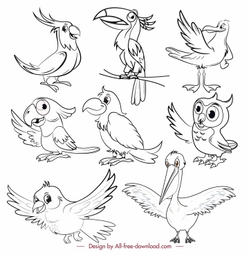 birds species icons black white cartoon sketch
