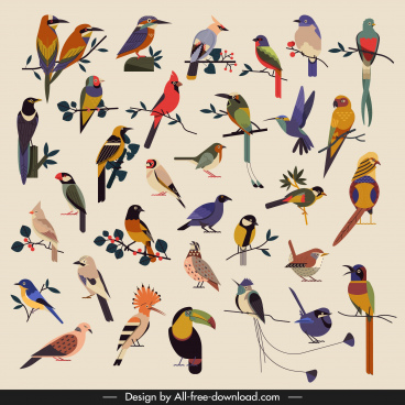 birds species icons collection colorful classical sketch