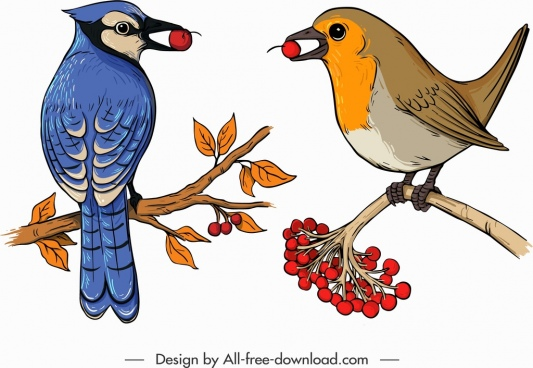 birds species icons colorful classical sketch perching gesture