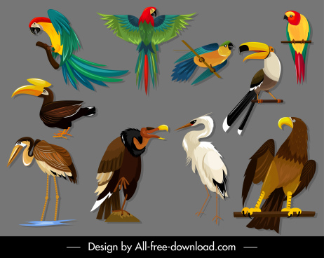 birds species icons colorful sketch