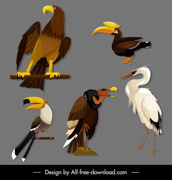 birds species icons eagle toucan stork vulture sketch