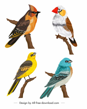 birds species icons perching sketch colorful cartoon design