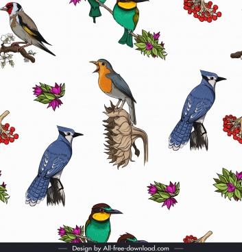 birds species pattern bright colorful repeating decor