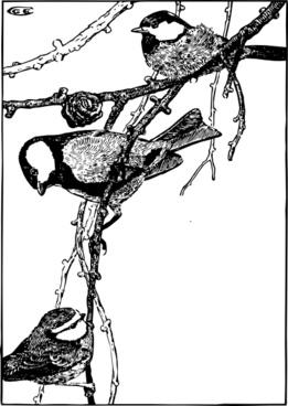 Birds Standing On Tree Branch clip art