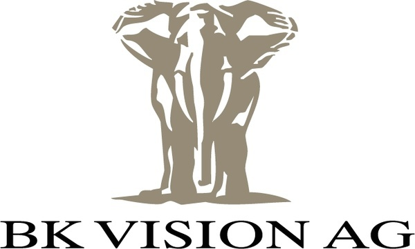 bk vision