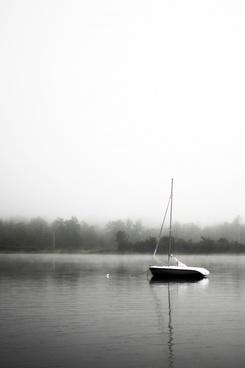 black and white boat calm fog grass lake landscape