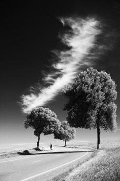 black and white cold contrast fog infrared landscape