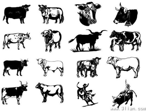 wild west design elements cow boys bulls icons