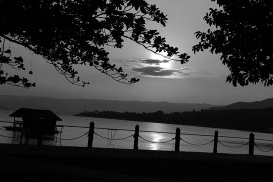 black and white nature 2