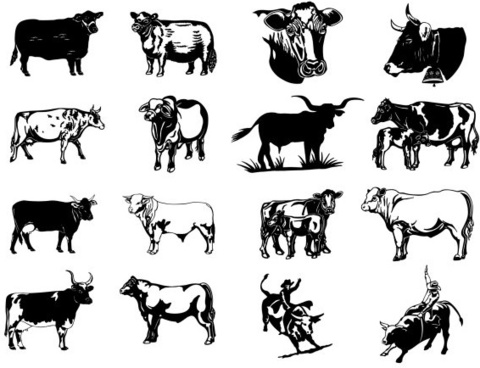 black and white paintings series two cow vector clip art pictures