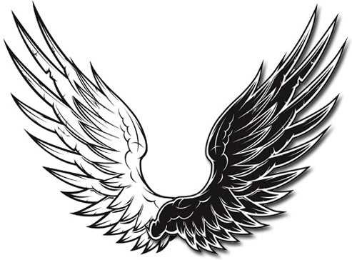 wings free vector download 987 free vector for commercial use rh all free download com free vector bird wings free download angel wings vector