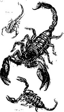 Black Scorpions clip art
