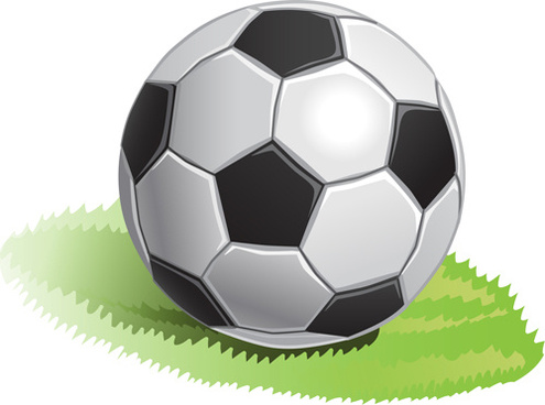 black with white soccer vector