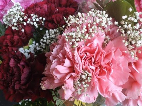 bloom blossom bouquet bride bunch color decoration