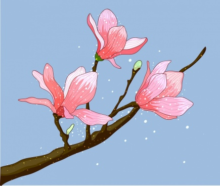 blooming cherry flowers painting multicolored decor