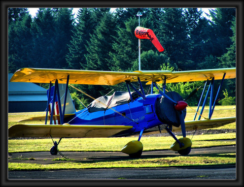 blue and yellow biplane