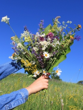 blue bouquet sky
