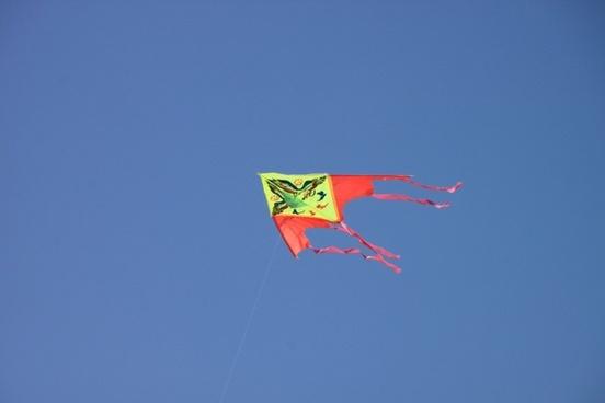 blue flying kite