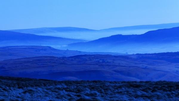 blue fog foggy