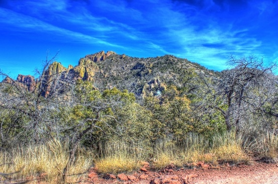 blue skies over mountain top at big bend national park texas