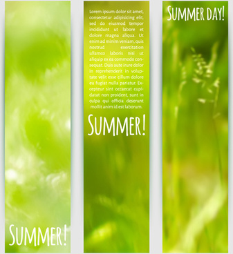 blurred green summer banner vector