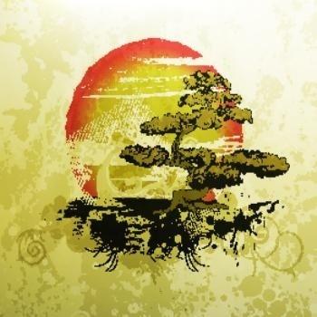 Bonsai illustration vintage