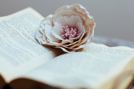 book 038 flower