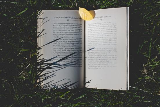 book in grass