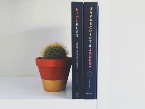 interior decoration with books and cactus