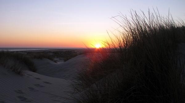 borkum sunset dunes