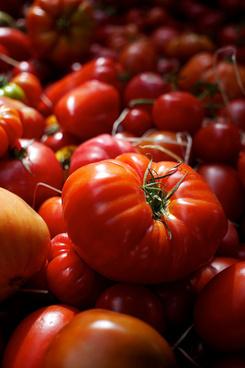 borough market tomatoes