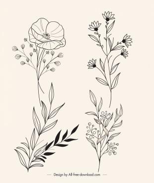botanical leaves plants icons handdrawn sketch