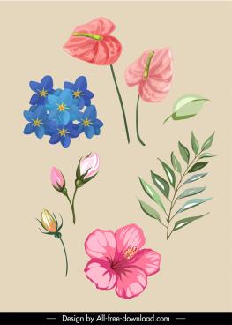 botany design elements petals leaf sketch elegant classic