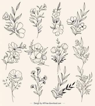 botany icons black white retro handdrawn sketch