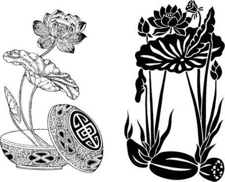 both classical lotus lotus root vector