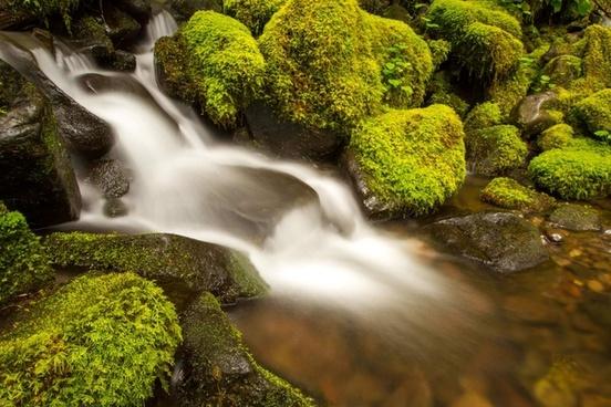 boulder cascade creek fall flow moss mossy nature