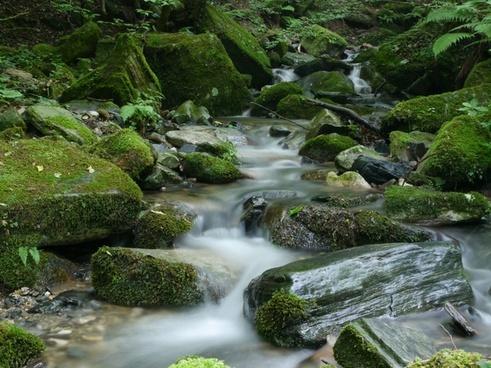 boulder cascade daytime environment forest landscape