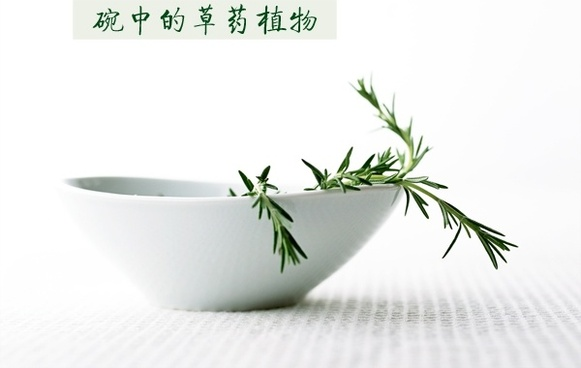 bowl of herbal plants to highdefinition picture