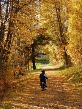 boy bicycle child