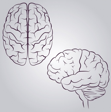 brain icons design monochrome sketch