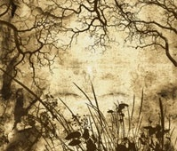 Branches and Foliage Brushes