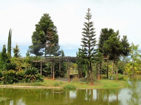 brasilia brazil botanical garden