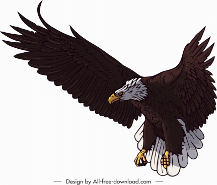 brave eagle icon colored cartoon sketch