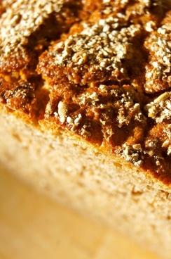 bread crust dough