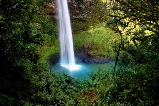 bridal veil fall water fall new zealand