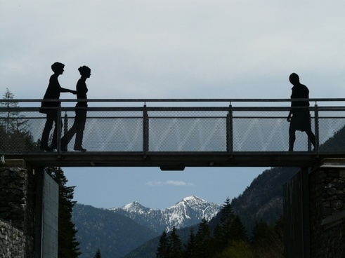 bridge web human