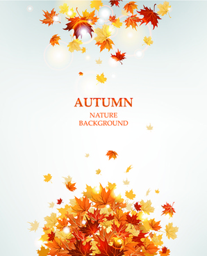 bright autumn leaves vector backgrounds