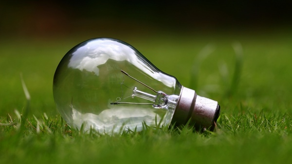 bright bulb business conceptual conservation eco