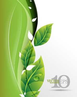 bright green leaves backgrounds vector graphics